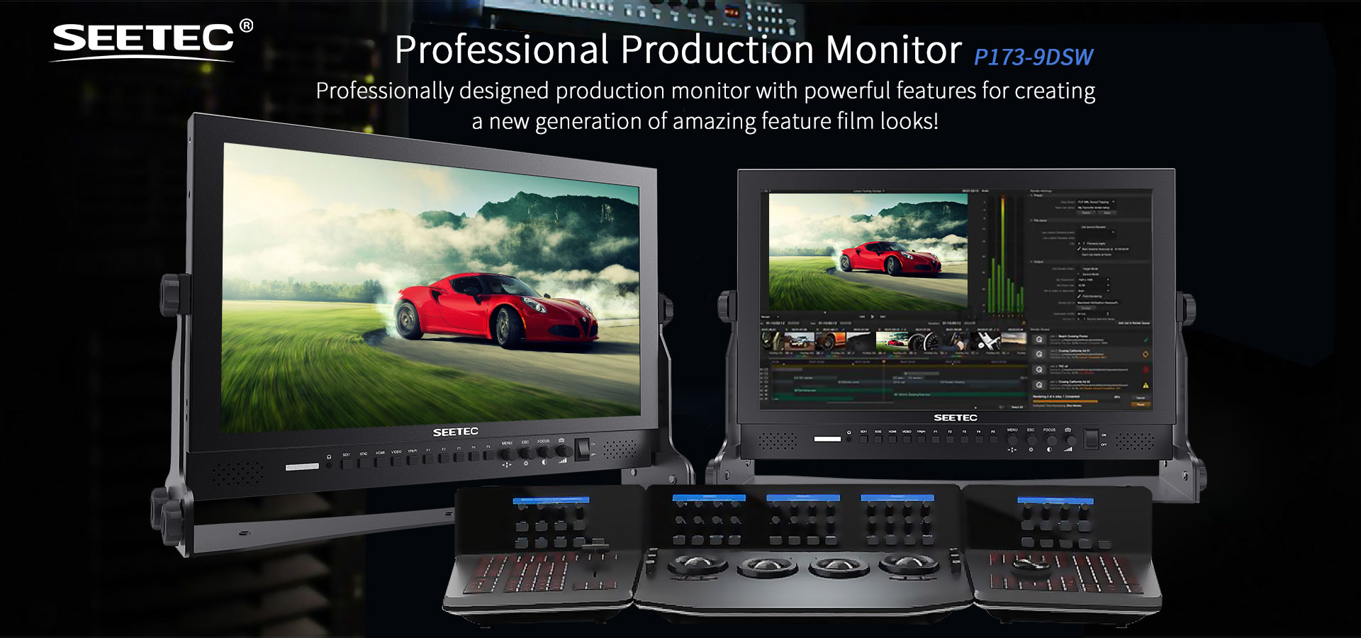 /173 professional production monitor P173-9DSW